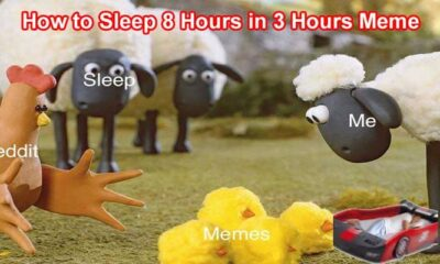 How To Sleep 8 Hours In 3 Hours Meme 2021